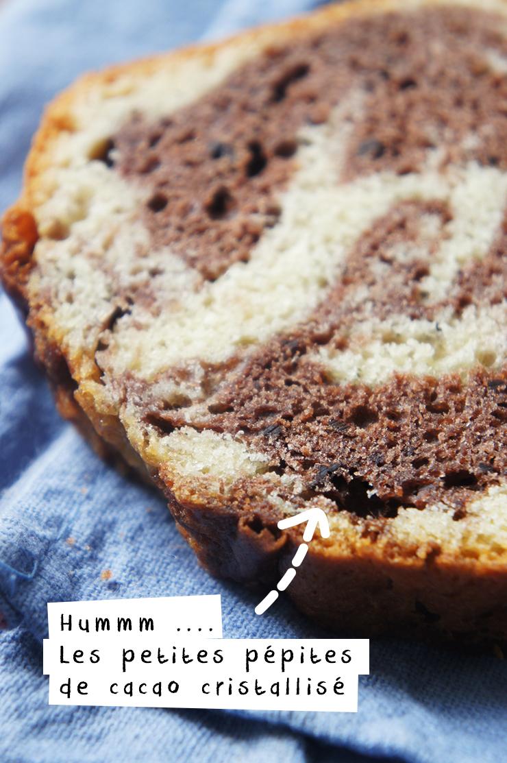 recette de cake facile marbré chocolat