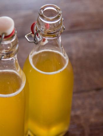 boisson lacto fermentée facile